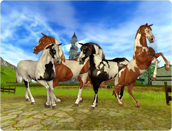 De vackra Amerikanska Paint-hästarna!