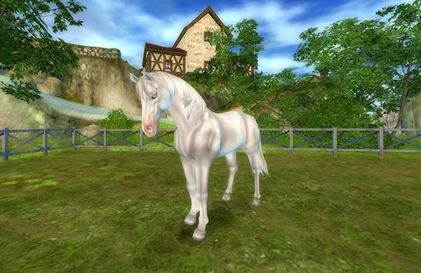 Vackra nya hästar!