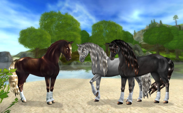 Updated Friesian Sport Horses on sale now for 890SC!