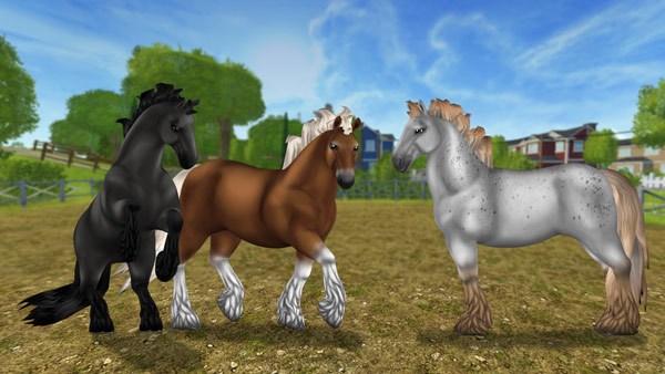 News Star Stable