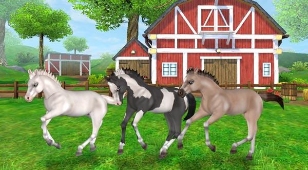 Det här är din chans att få leka med de fluffiga Mustangfölen!