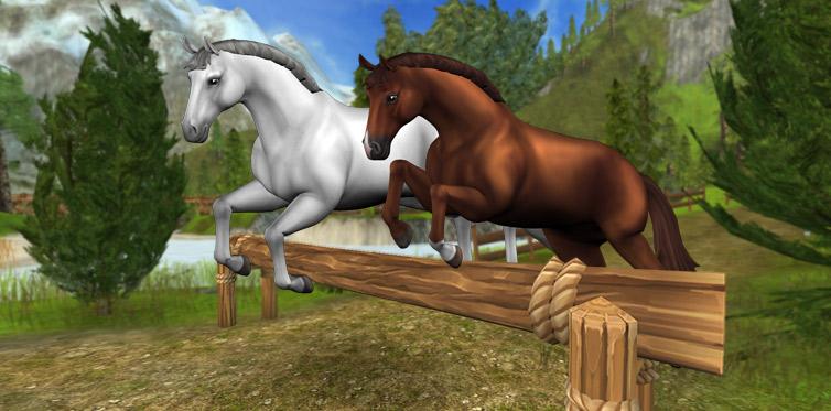 Czy zdecydujesz się na kupno konia hanowerskiego?