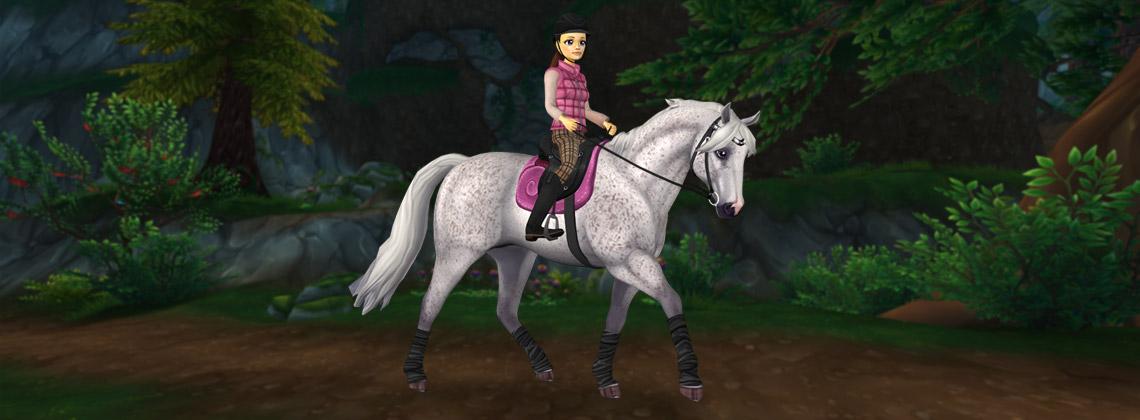 New year, new horses!