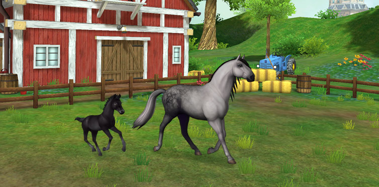 Take care of your very own Lusitano foal in Star Stable Horses!