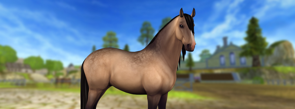 New horses and a new feature!