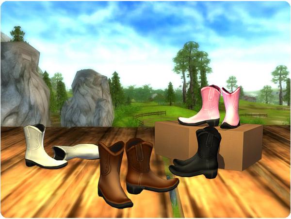 Nya coola cowboyboots!