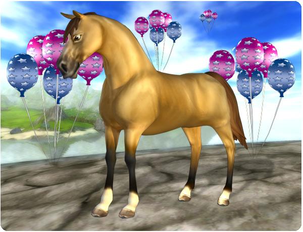 En av de vackra Morgan-hästarna!