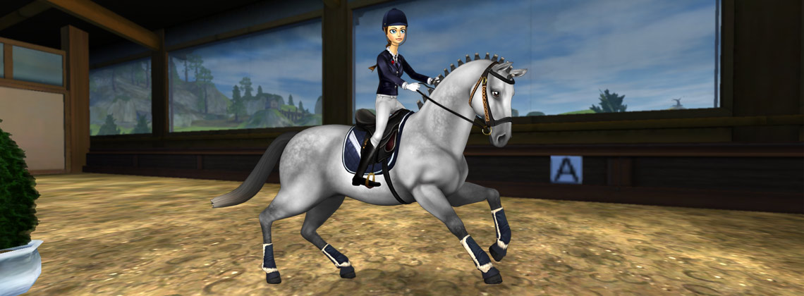 Weekend De Reduction Pour Star Rider Star Stable